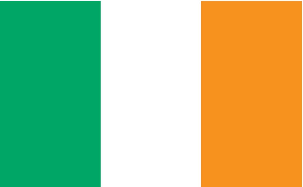 Bartending Salaries - Irish Flag